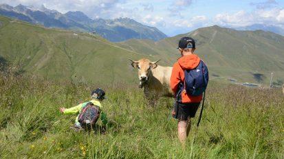 le-corbier-les-sybelles-ete-vaches-paysage